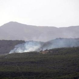 Aygün, Bakan Eroğlu'na Orman Yangınlarını Sordu