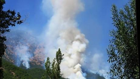 Dersim'de Orman Yangınına Müdahale Edilemiyor