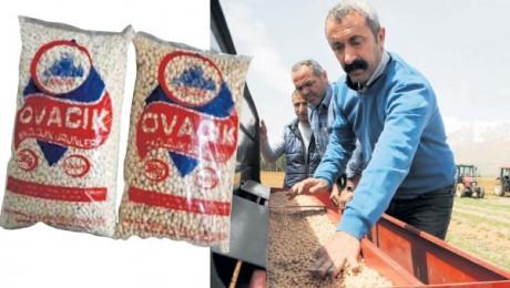 Ovacık Belediyesi, nohut ve fasulyeden sonra süt üretimi de yapacak