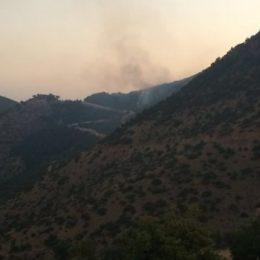 Hakis Vadisi'ndeki orman yangınına müdahale edilmiyor!