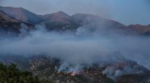 Dersim merkez kırsalında orman yangını