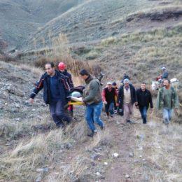 Domuz saldırısına uğrayan çobanı köpekler kurtardı